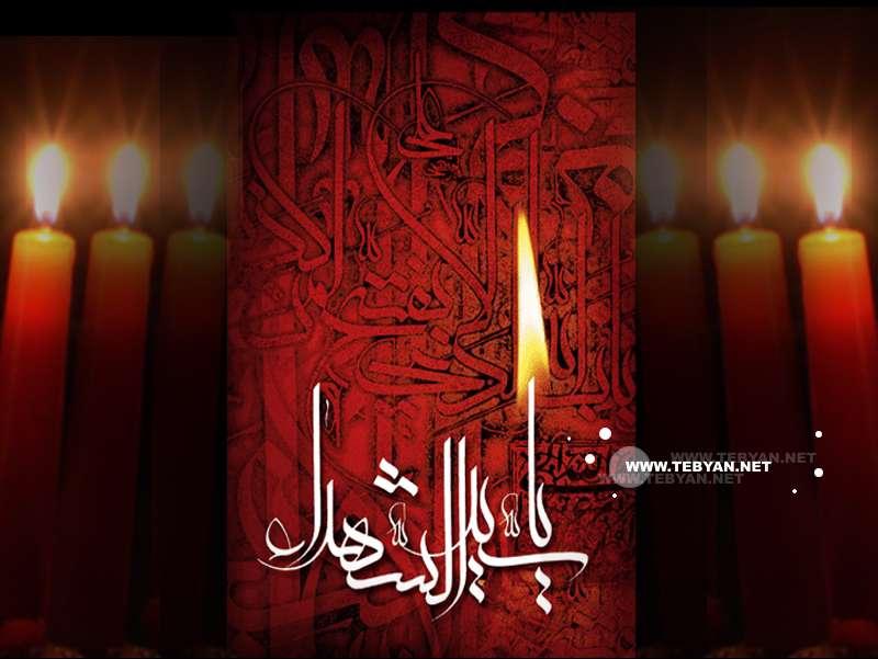 یا سید الشهدا