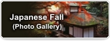 Japanese Fall (Photo Gallery)
