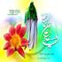 Фотоальбом: Драгоценные речи Имама Али (мир ему!)
