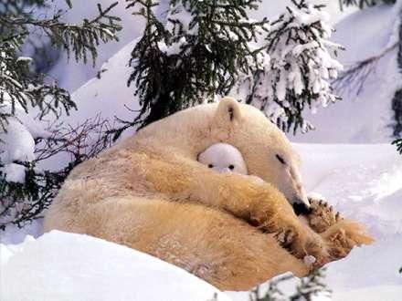 بيا بغل مامان تا سردت نشه
