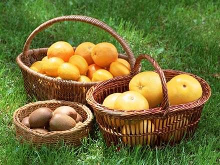 سبدهايي پر از پرتقال و کيوي و گريپ فروت