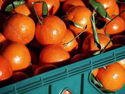جعبه اي پر از نارنگي