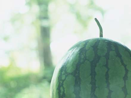 هندوانه ی گرد و راه راه