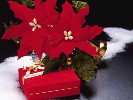 هدیه شب کریسمس