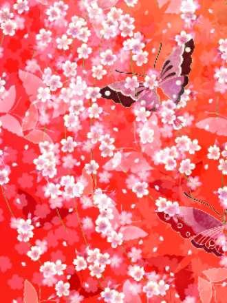 دنیای زیبای پروانه ها