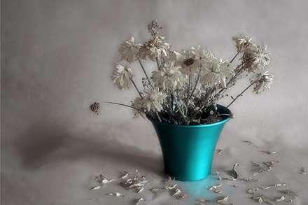 گل های نیمه پژمرده