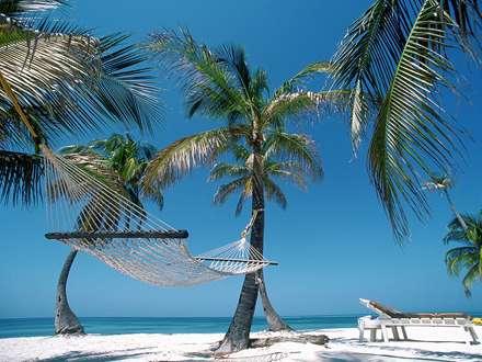 استراحتگاه ساحلی