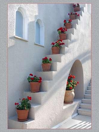 گلدان روی پله