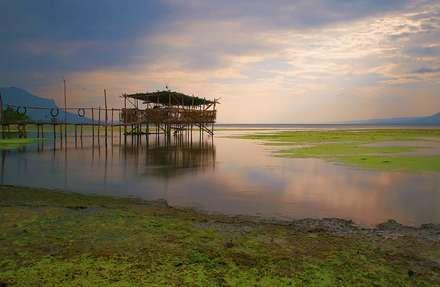 سکوت دریاچه
