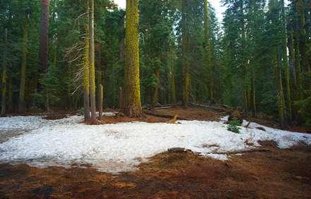 برف باقیمانده از زمستان