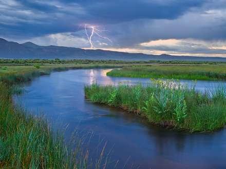 رودخانه در دره سرسبز