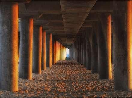 ستون های طلایی