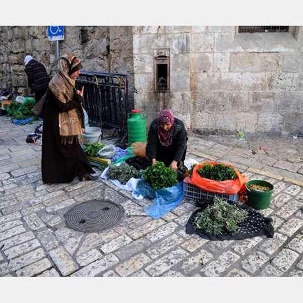 سبزی فروشی خانم ها