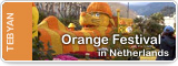 Orange Festival in Netherlands