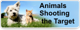 Animals Shooting the Target