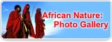 African Nature: Photo Gallery