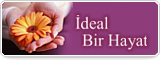 İdeal Bir Hayat