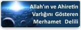 Allah'ın ve Ahiretin Varlığını Gösteren Merhamet Delili