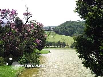 تصاوير زيبا و ديدني از کشور برزيل