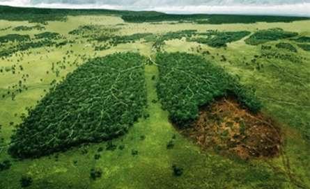 تخریب زمین