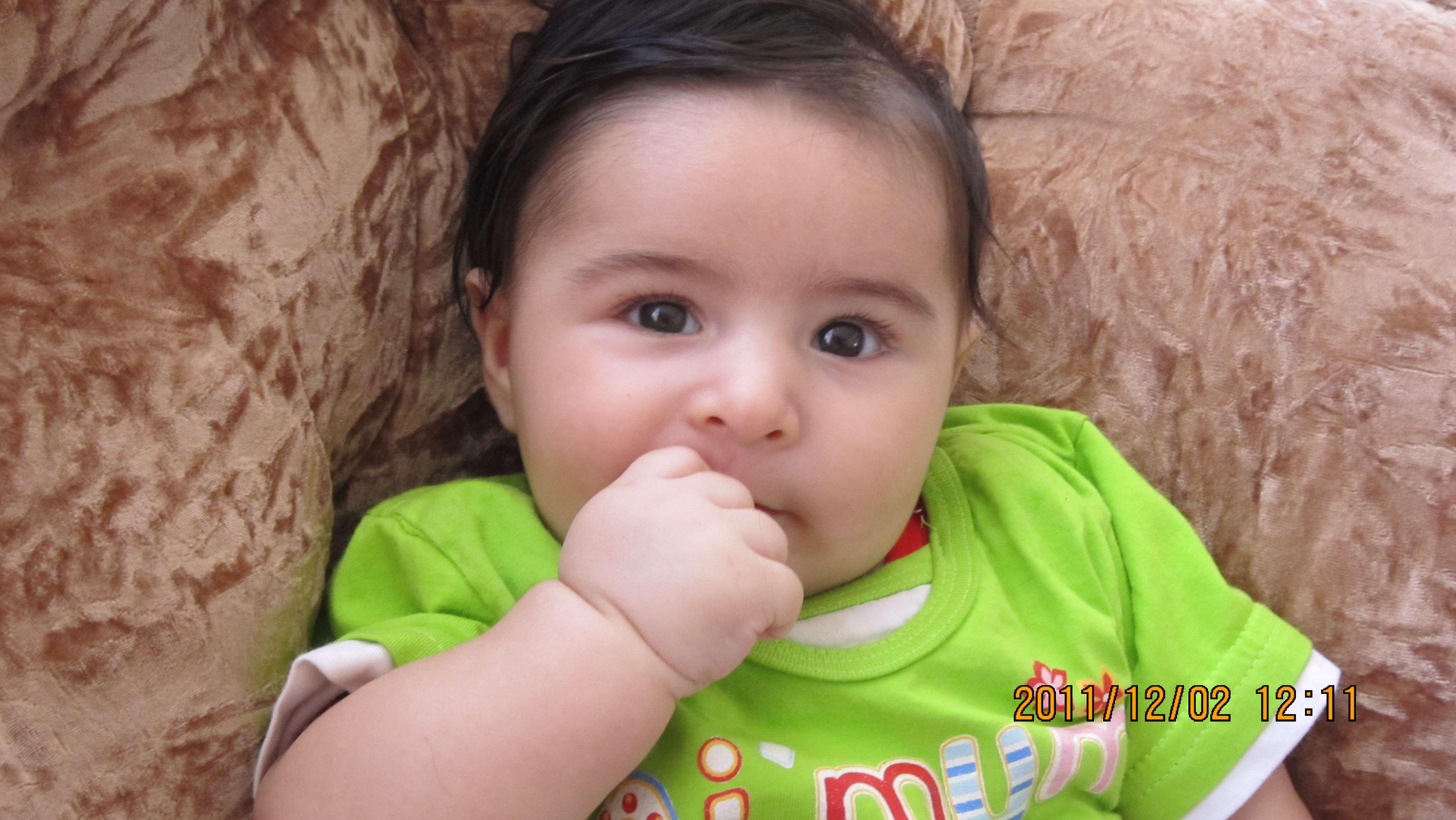 سید ایزد عاشق
