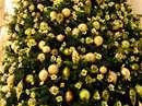 درخت کریسمس با تزئینات  طلایی