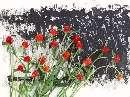گلهاي قرمز كنار ديوار
