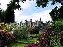 باغي با گلهاي زيبا