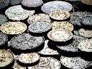 انواع سکه خارجی