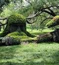 زیباترین آثار جشنواره گیاه شناسی مونترال