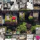 تصاویر هوایی جالب از «نیویورک»