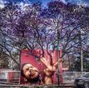تعامل هوشمندانه این هنرهای خیابانی با طبیعت