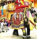 عکس های زیبا از کشور هند