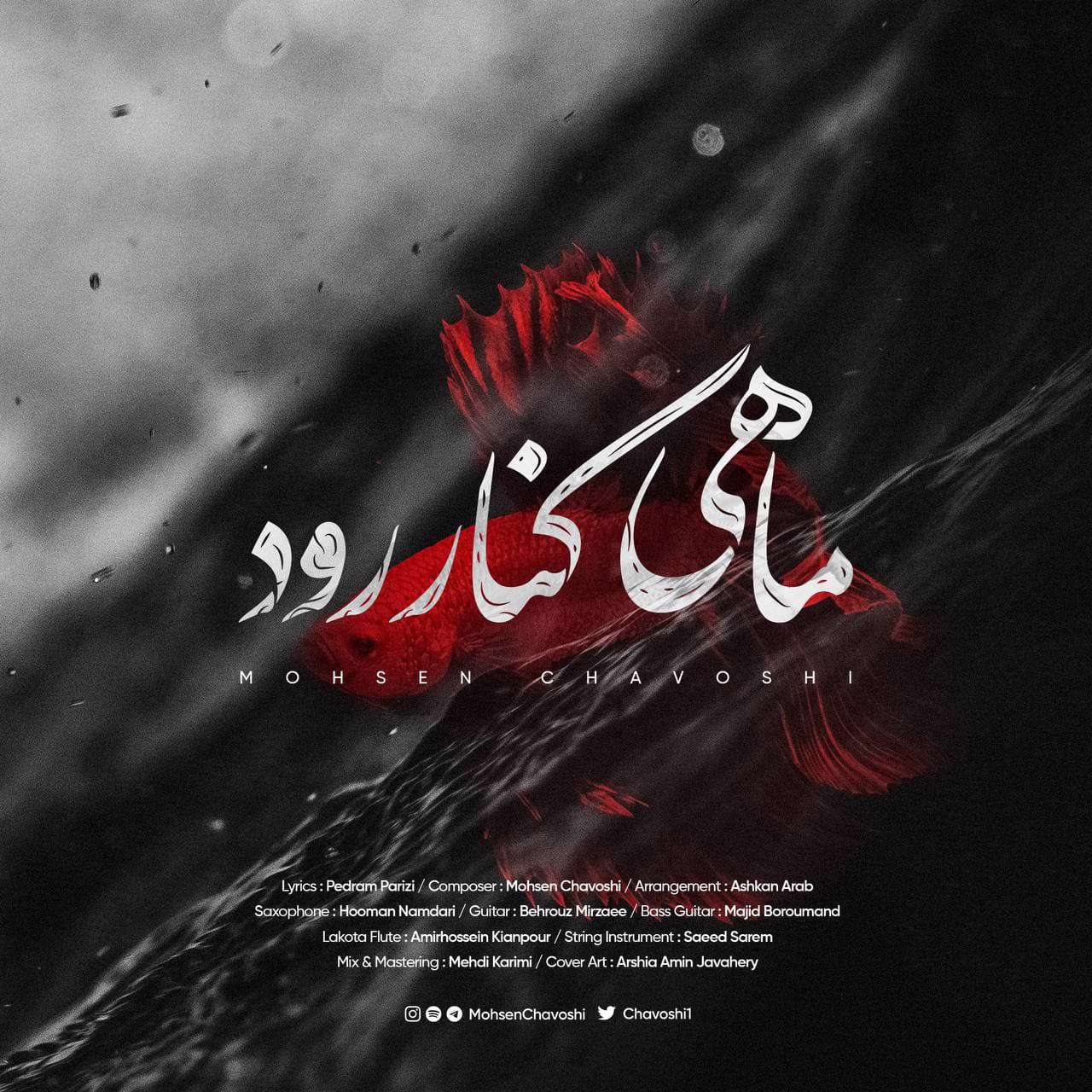 دانلود آهنگ ماهی کنار رود محسن چاوشی به همراه متن شعر