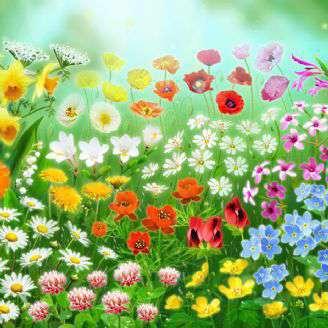 دانلود ترانه کودکانه «ایوون بهار»