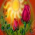 بهاران خجسته باد ....