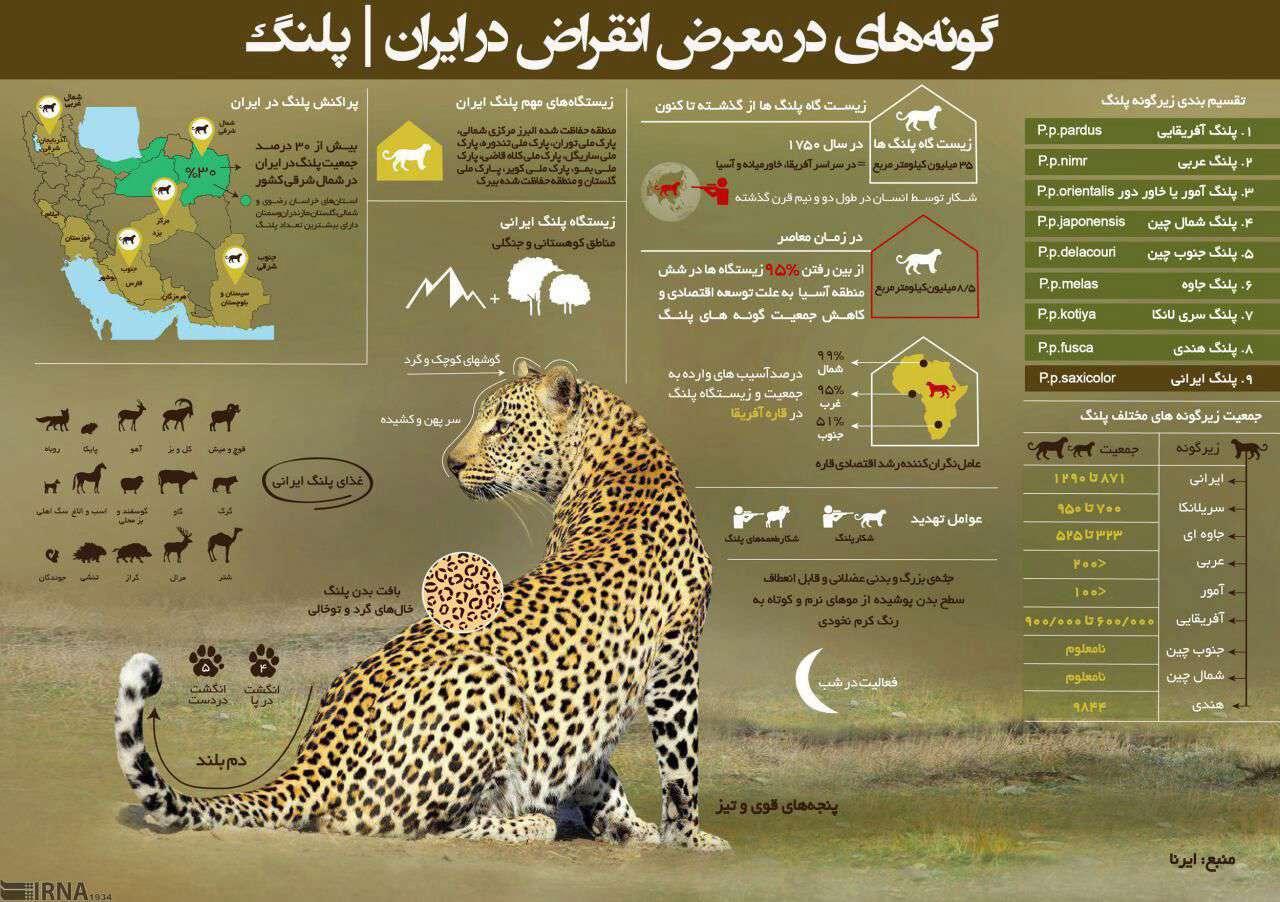 گونه در معرض انقراض