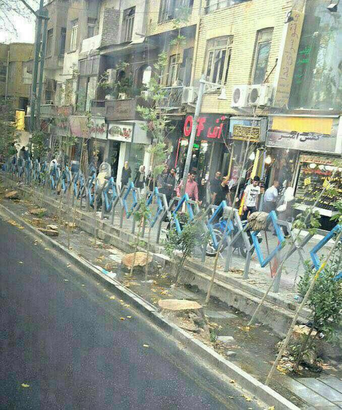 قطع درختان خیابان ولیعصر توسط شهرداری