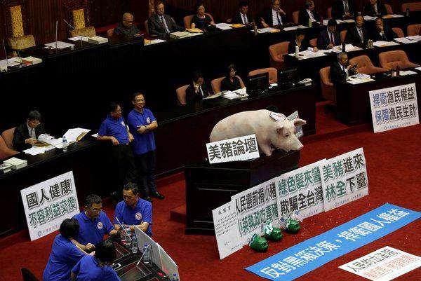 اعتراض مزرعهداران تایوانی به تصمیم دولت برای واردات گوشت خوک از آمریکا؛