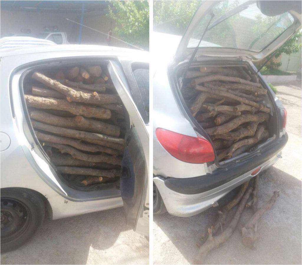 قاچاق چوب با پژو 206 / شهر کرد