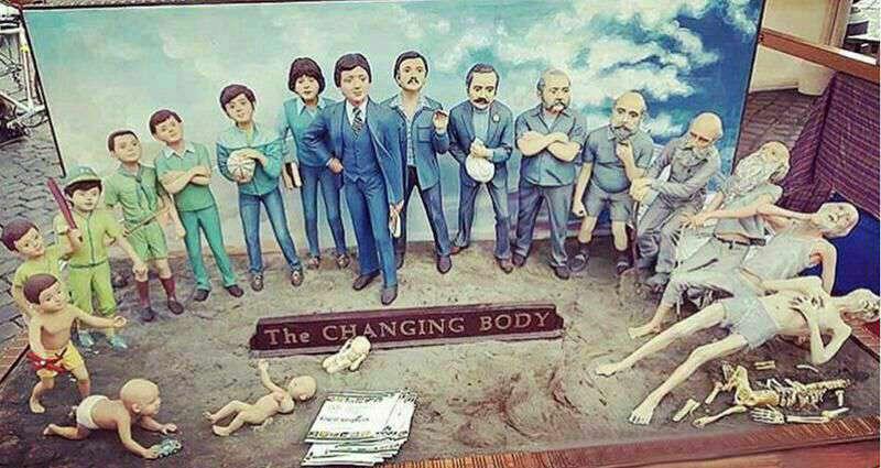 از تولد تا مرگ