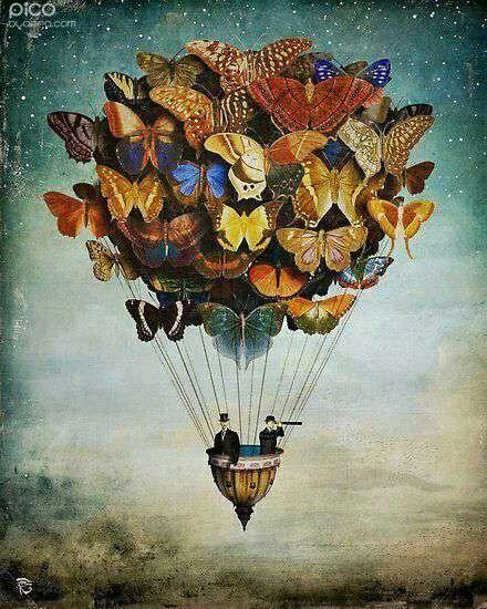پروانه های رنگارنگ