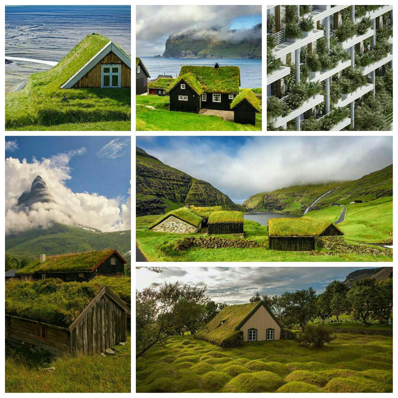 خانه های اروپایی با سقف پوشیده از گیاهان برای کاهش مصرف انرژی و حفظ دمای خانه ها
