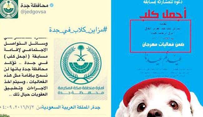 مسابقه انتخاب«زیباترین سگ» در عید فطر عربستان!   فراخوانی در عربستان با عنوان مسابقه انتخاب زیباترین سگ در عید سعید فطر اعلام شده است