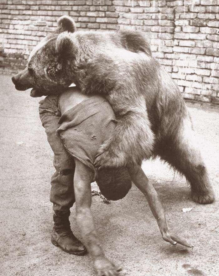 معرکه گیر و کشتی گرفتن با خرس  تهران دهه ۱۳۳۰