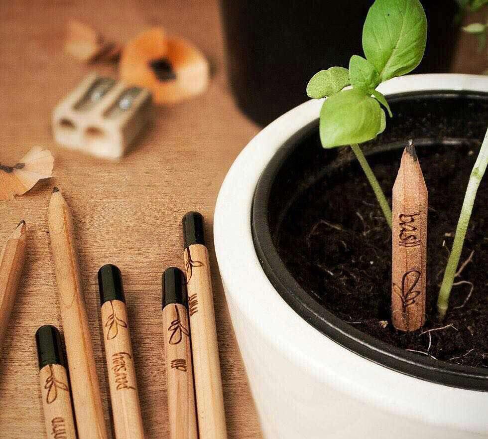 يك نوع مداد وجود دارد كه بعد از اتمام به گياه تبديل مى شود. در اين مداد به جاى پاك كن انتهاى آن بذر قرار دارد. هر يك مداد از يك درخت و هر يك درخت از يك مداد، شعار این شرکت است.