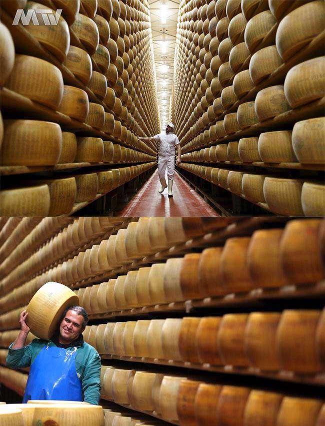 بانک امیلیانو یک بانک پنیری در ایتالیا
