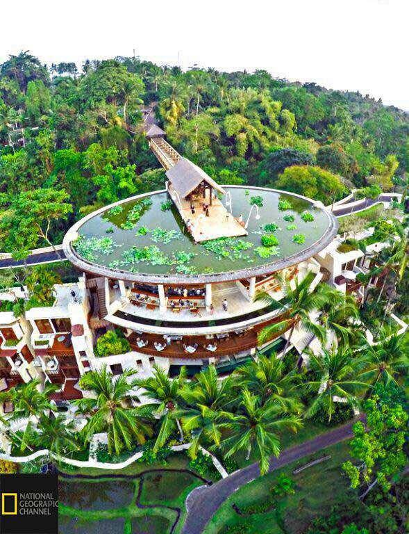 تصویری جالب از زيباترين پشت بام جهان