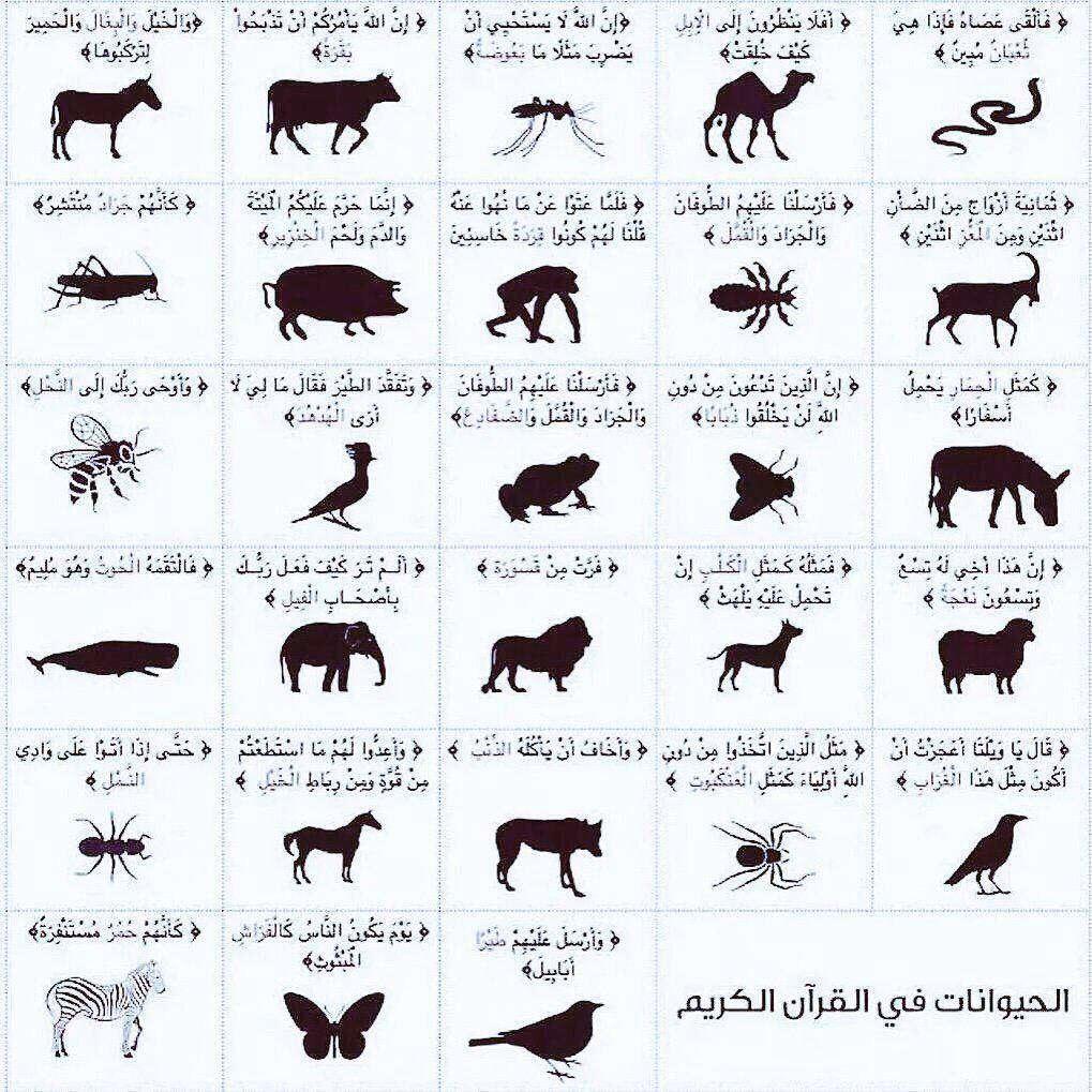 حیواناتی که نامشان در قرآن ذکر شده