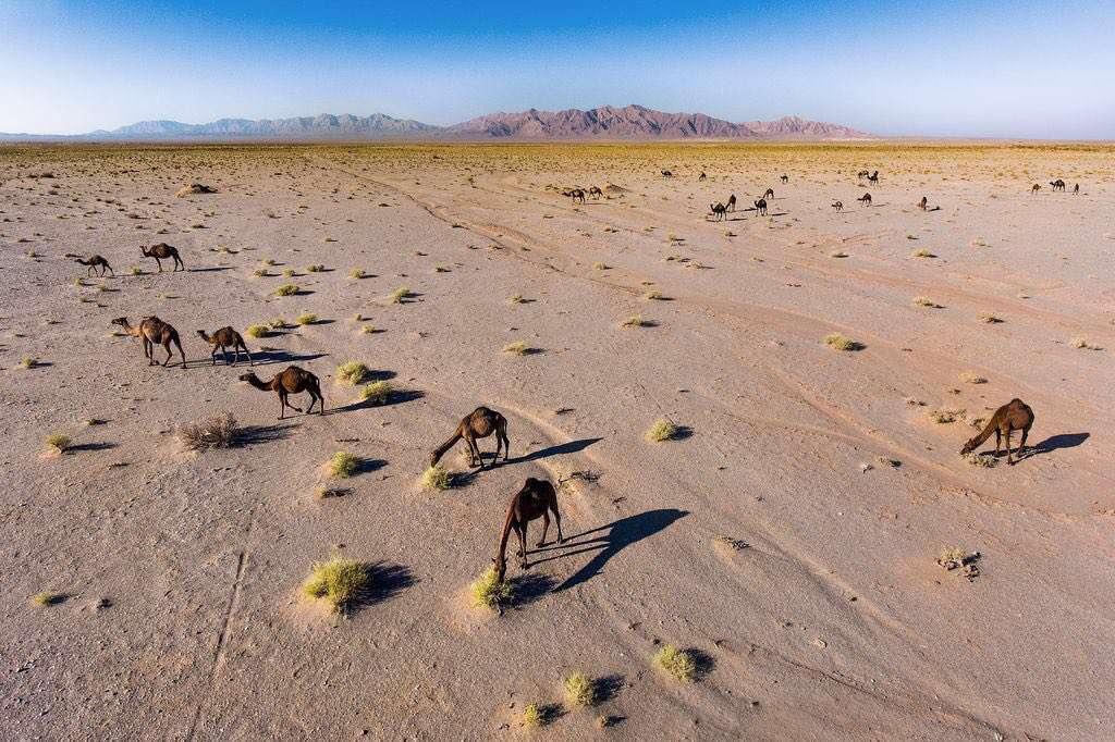 عکس روز نشنال جئوگرافیک، دشت طرود در استان سمنان عکاس:عباس رستگار